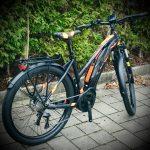 #free_wheels_shop, #r-raymon, #raymon, #e-bike,