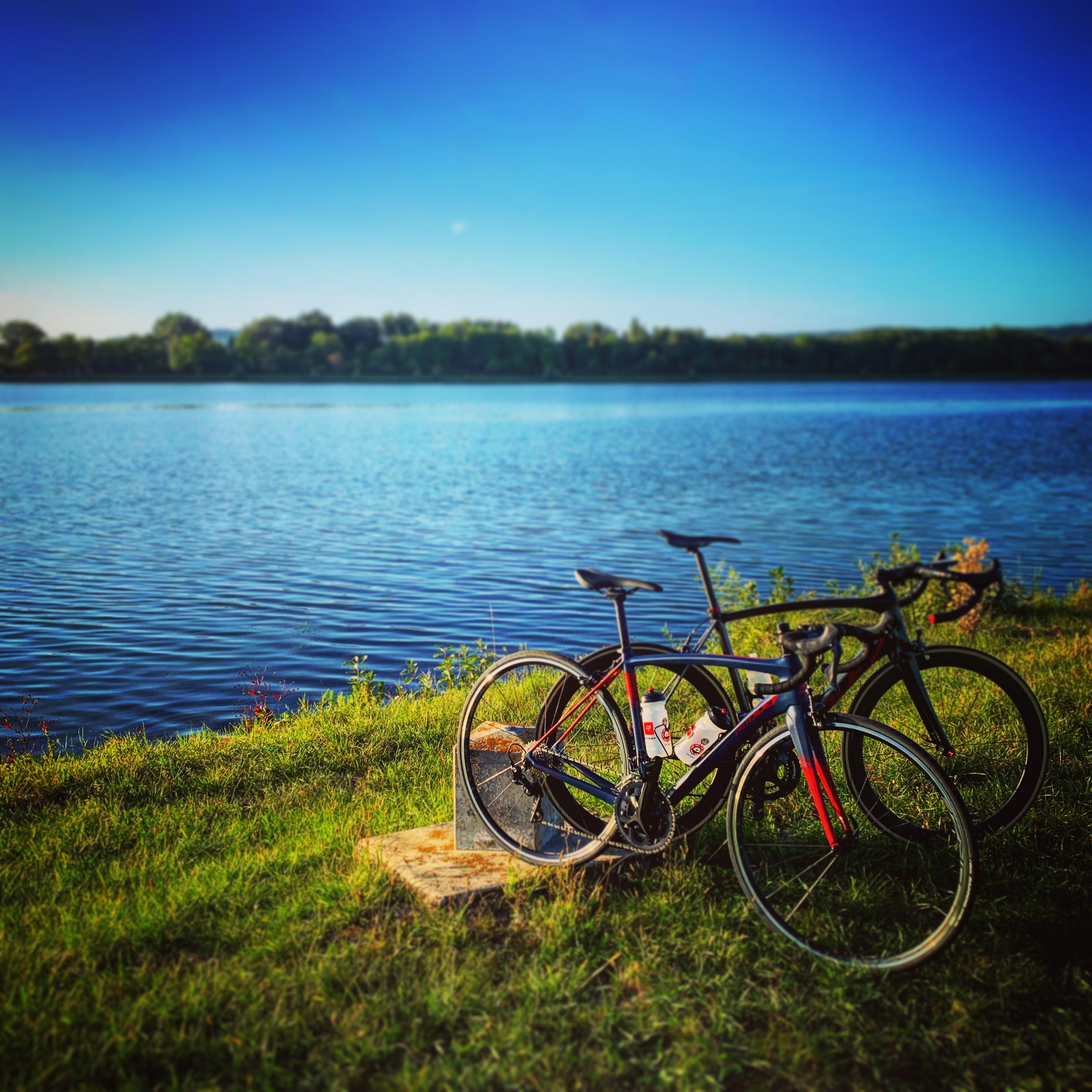 Free Wheels - Ridley Herbst